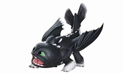 Dragon Train Ruffrunner Fandom Night Wiki Howtotrainyourdragon