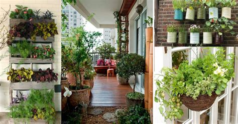 creative ideas  balcony garden containers balcony