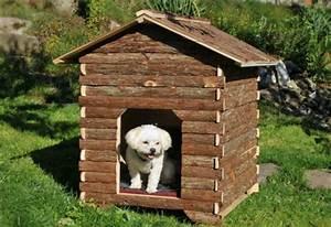 Hundehütte Für Drinnen : hundeh tte selber bauen super ideen ~ Michelbontemps.com Haus und Dekorationen