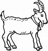 Goat Coloring Clip Clipart sketch template