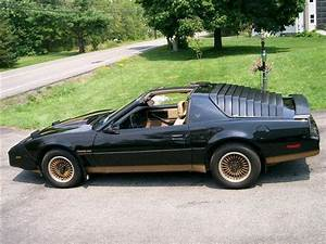 83 Trans Am Related Keywords 83 Trans Am Long Tail