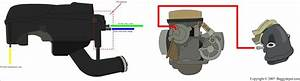 Gy6 Carburetor Vacuum Lines  U2022 Vacuumcleaness