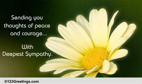 thoughts  peace  courage  sympathy condolences