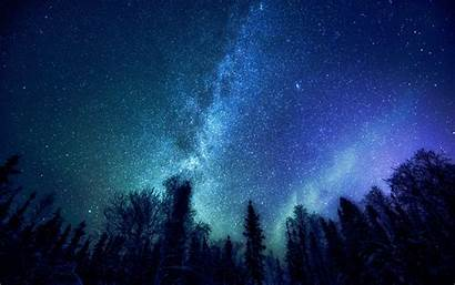 Milky Stars Way Nature Trees Desktop Wallpapers