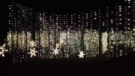 lights at callaway gardens 2011