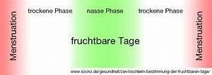 Eisprung Nach Ausschabung Berechnen : zervixschleim bestimmung der fruchtbaren tage socko ~ Themetempest.com Abrechnung