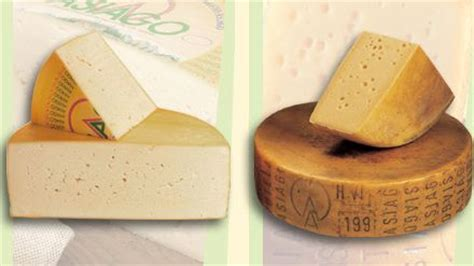 fromage a pate dure l asiago 183 232 molto goloso