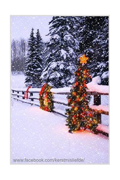 Christmas Snow Country Falling Decorated Trees Winter