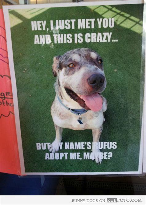 adoption poster