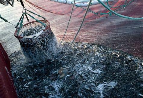 chambra 13 complet maroc ue négociations sur les droits de pêches