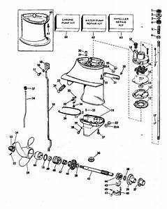 Johnson Outboard Motor Model Numbers