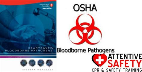 Best 25+ Bloodborne Pathogens Training Ideas On Pinterest