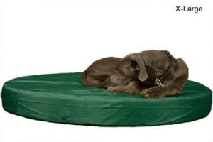 k9 ballistics bed the best orthopedic beds in 2017 dogs recommend