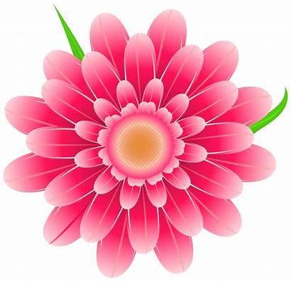 Flower Clipart Pink Transparent Clipground