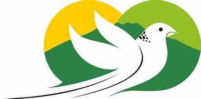 Burung Karanganyar Kabupaten Hari Terbang Jadi Siluet