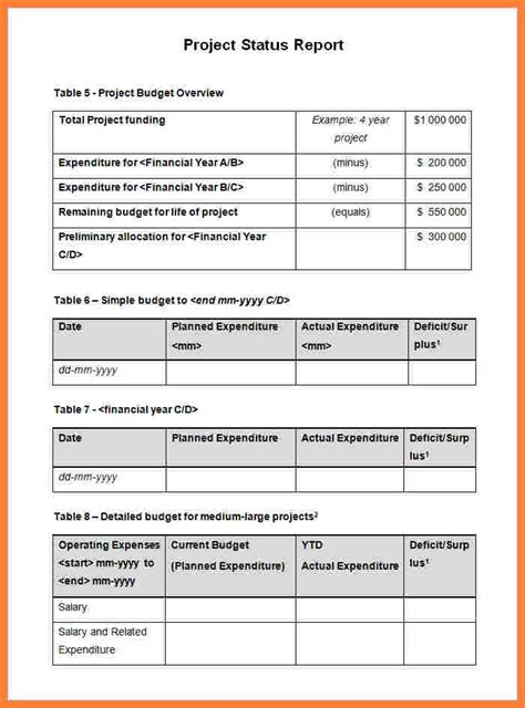 progress report template  projects progress report