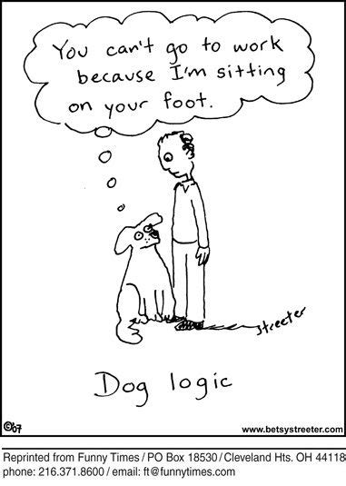 images  funny dog cartoons  pinterest