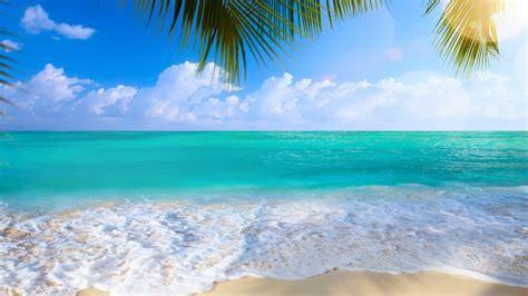 Summer Beach Backgrounds ·①