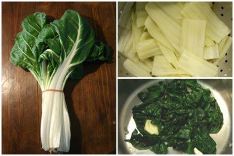 cuisiner les cotes de bettes cuire à blanc des côtes de blettes et sauter le vert en