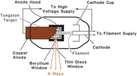 Production Rays Radiology Key