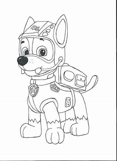 Paw Patrol Coloring Pages Sheets Rocky Coloring2print