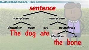 Simple Sentences Lesson For Kids  Definition  U0026 Examples