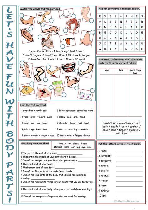 parts   body vocabulary exercises worksheet