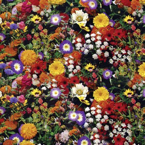 Tappeto Di Fiori tappeto di fiori outlet giardino dmail