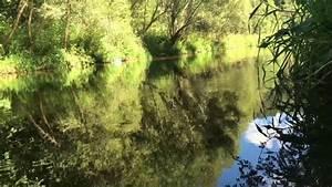 Schöne Bilder Kaufen : sch ne natur bilder in fhd youtube ~ Orissabook.com Haus und Dekorationen