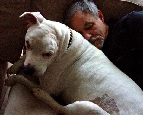bait dog oogy died surrounded  loving family