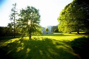 University receives fifth Tree Campus USA recognition ...