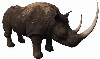 Rhino Rhinoceros Conan Exiles Transparent Gamepedia Conanexiles