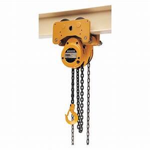 Harrington Manual Chain Hoist  1000 Lb  Load Capacity  10