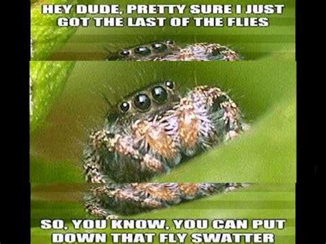 Sad Spider Meme - image gallery sad spider
