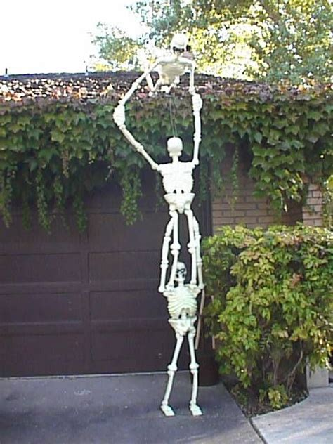 skeletons climbing house skeletons climbing and plastic on pinterest