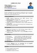 Best Resume Format Combination Hybrid Resume Best Resume Ever Best Best Resume Format Ever Best Resume Get Domain Pictures 11 Best Resume Samples Pdf Easy Resume Samples