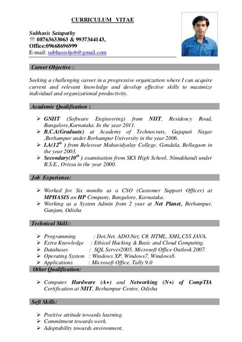 Best Resume Format For It Professional by Best Resume
