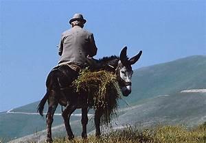 The, Sibillini, Hills, I, Monti, Sibillini, Umbria, Marche
