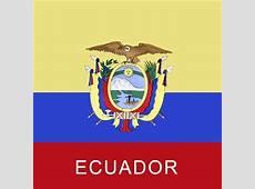 Ecuador Flag Bandana 22x22 Inch WholesaleForEveryonecom