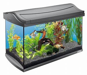 Www Otto De Sale : nano aquarium komplettset unsere favoriten ~ Bigdaddyawards.com Haus und Dekorationen