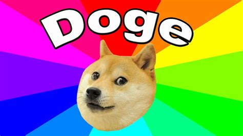 200 Luxury Doge 1080x1080 For You Left Of The Hudson