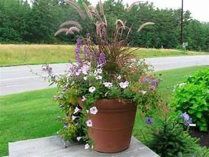 Container gardening ideas quiet corner for Container garden design ideas