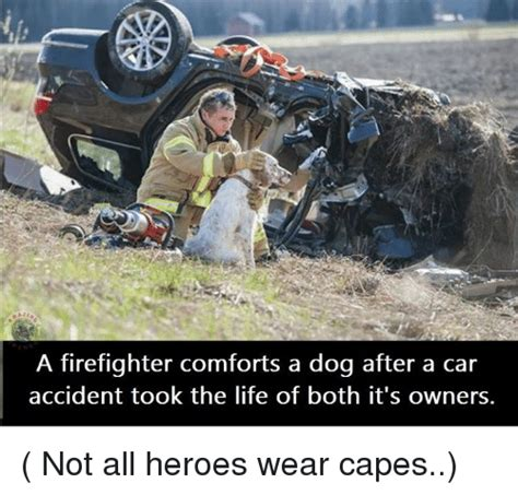 Not Since The Accident Meme - 25 best memes about car accident car accident memes