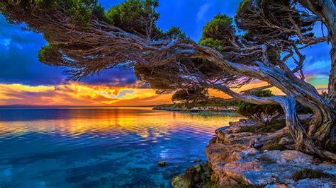 Coastal Sunset In Park Lakeshore Paradise Hd Wallpaper ...