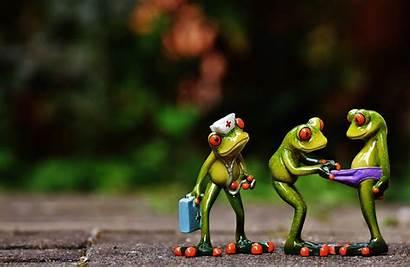 Nurse Funny Frog Doctor Emergency Frogs Sweet