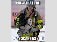 Phew that tree was scary as shit Tree Meme Picsmine