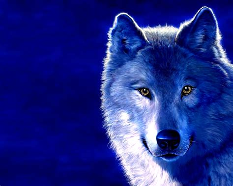 Abstract Wolf Wallpaper Hd by 3d Wolf Hd Desktop Best Quality Wallpapers Top Quality
