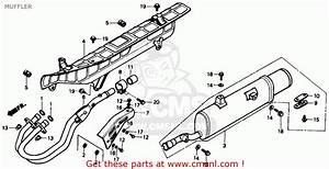 87 Honda Fourtrax 300 Trx Wiring Diagram Honda 300 Fourtrax Parts Diagram Wiring Diagram