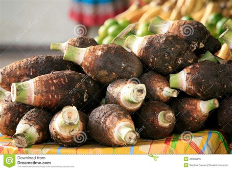 Dachine Or Taro, Cayenne Market, French Guiana Stock Image