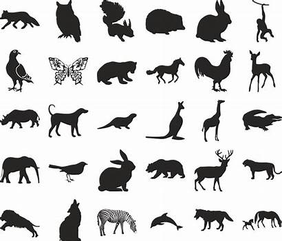Icon Animals Vector Svg Ai Psd Eps